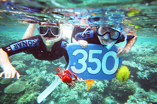350.org members at the Great Barrier Reef