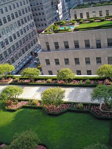 A rooftop garden in Rockefeller Center, NYC. Photo courtesy of David Shankbone/Wikimedia Commons.