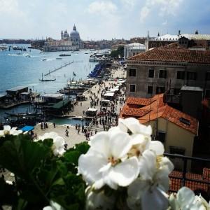 Photo courtesy of Venice! / Facebook