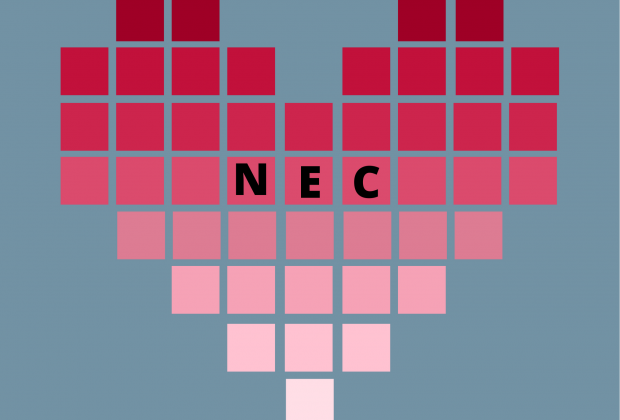 Heart made of pixels in a pink gradient, reading NEC in the center